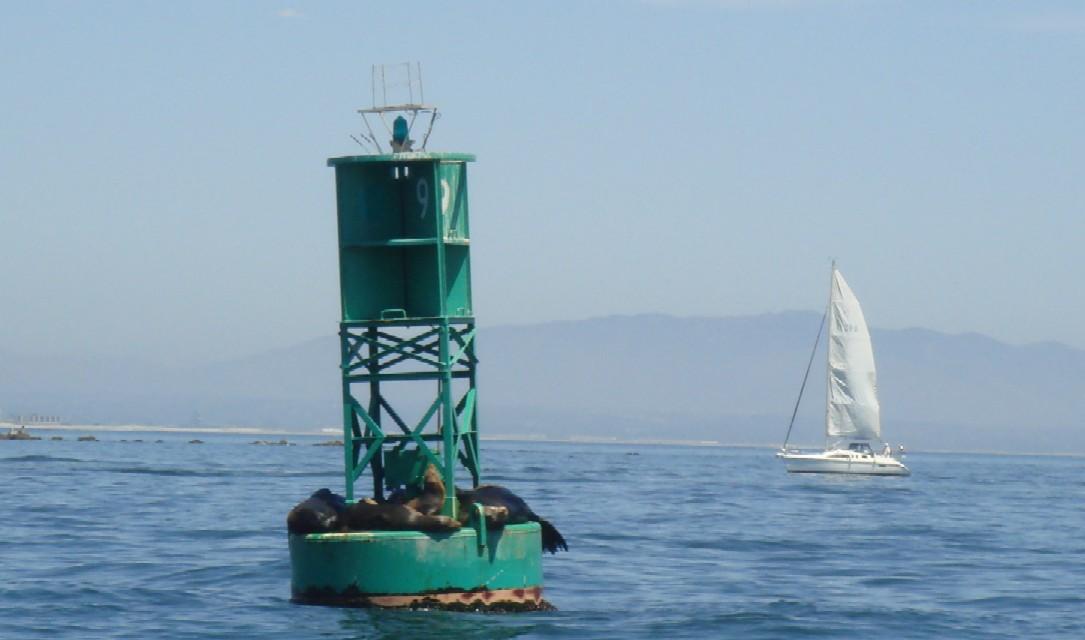 sailing 051708 6.jpg