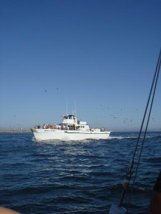 sailing 051708 9.jpg